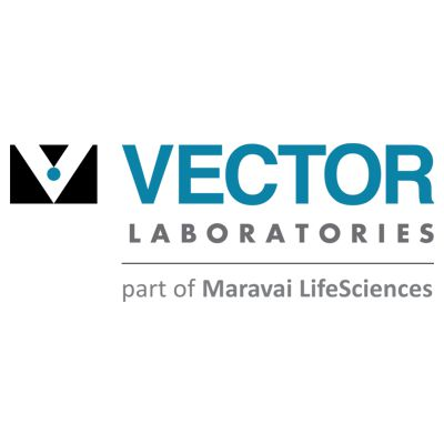 Anticorpos - Anticorpos - Vector Laboratories